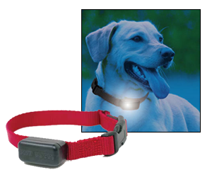 Pet Stop Ecolite Rechargeable Receiver